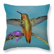 Allens Hummingbird Male Throw Pillow