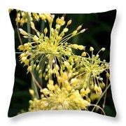 Allium Flavum Or Fireworks Allium Throw Pillow