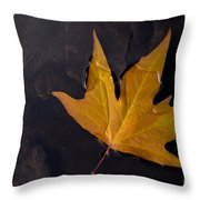 Alone Throw Pillow