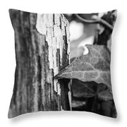 Along The Fence Throw Pillow