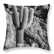Alpaca Incahuasi Island Throw Pillow