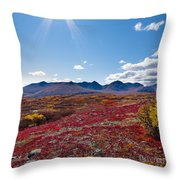 Alpine Landscape In Fall Throw Pillow