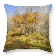 Alpine Loop Scenic Byway American Fork Canyon Utah Throw Pillow