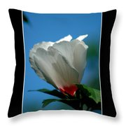 Althea Flower Throw Pillow