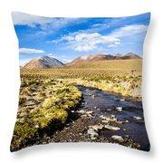Altiplano In Bolivia Throw Pillow