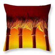Amber Grains 2 Throw Pillow