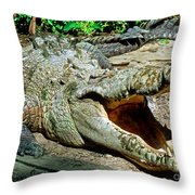 American Crocodile Throw Pillow