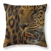 Amur Leopard 1 Throw Pillow