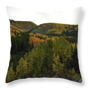 An Avalanche Of Color Throw Pillow