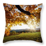 Late In The Day And A Setting Sun Throw Pillow