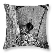 An Old Mill Stone Ely's Mill Roaring Fork Bw Throw Pillow