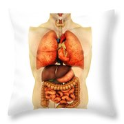 Anatomy Of Human Body Showing Whole Throw Pillow