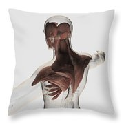 Anatomy Of Male Muscles In Upper Body Throw Pillow