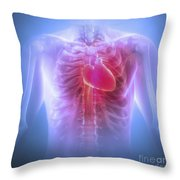 Anatomy Of The Chest Throw Pillow
