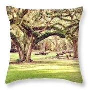 Ancient Oaks Throw Pillow