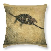 Ancient Turtle Throw Pillow