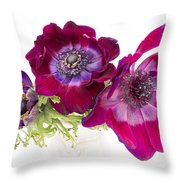 Anemone Trio Throw Pillow