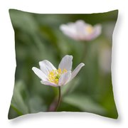 Anemone Windflower Throw Pillow