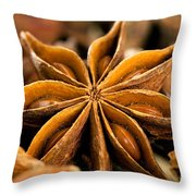 Anise Star Throw Pillow