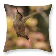 Anna's Hummingbird Throw Pillow