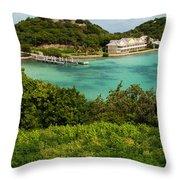 Antigua Long Bay Throw Pillow