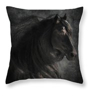 Anton 343 Throw Pillow