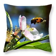 Apple Blossom And Honey Bee Throw Pillow