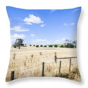 Arid Agricultural Landscape In South Tasmania Throw Pillow