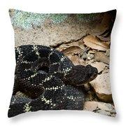 Arizona Black Rattlesnake Throw Pillow