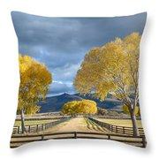Arizona Horse Ranch Throw Pillow