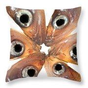 Arrangement Of Small Fish Smelt Throw Pillow
