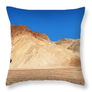 Artist' Palette Pano Throw Pillow by Jane Rix