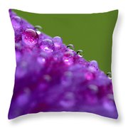 As We Are Throw Pillow