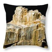 Asbestos Throw Pillow by Millard H. Sharp