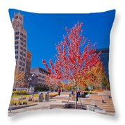 Asheville North Carolina Throw Pillow