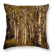 Aspen Forest In Fall Throw Pillow