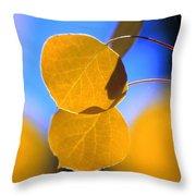Aspen Glow Throw Pillow