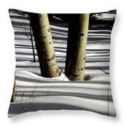 Aspen Shadows Throw Pillow
