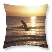 Australian Pelican Glides At Sunrise Throw Pillow