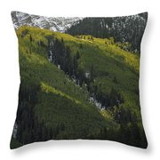 Autumn Angles Throw Pillow