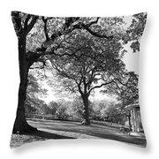 Autumn At Runnymede Uk Throw Pillow
