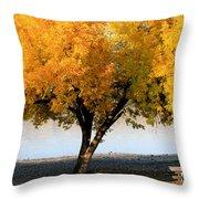 Autumn At The River Throw Pillow