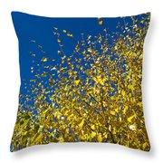 Autumn Blue Sky Throw Pillow