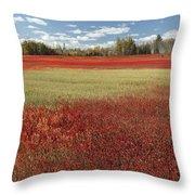Autumn Blueberry Field Maine Throw Pillow