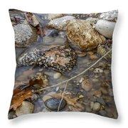 Autumn Creek Throw Pillow