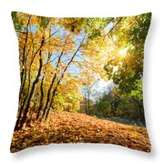 Autumn Fall Landscape In Forest Throw Pillow