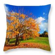 Autumn Fall Landscape Throw Pillow
