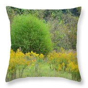 Autumn Grasslands 2013 Throw Pillow