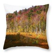 Autumn In The Adirondacks Throw Pillow