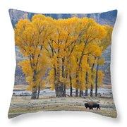Autumn In The Lamar Throw Pillow